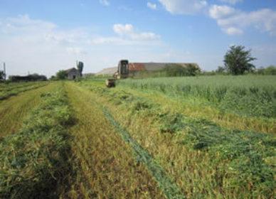 Înființare fermă agrozootehnică ecologică cu micro FNC și unitate de producere energie din surse regenerabile