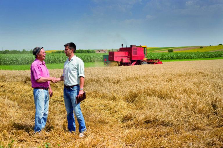 E lege: Amnistie fiscală pentru micii fermieri!