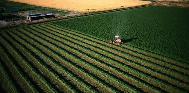 Arabii investesc 1.3 MILIARDE de dolari în agricultura din România, Rusia, Ucraina, Ungaria, Belarus și Bulgaria