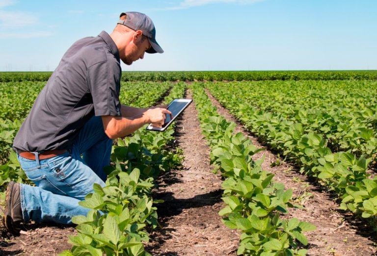 Asociaţiile agricole pot obţine bani pentru promovarea produselor şi informarea consumatorilor
