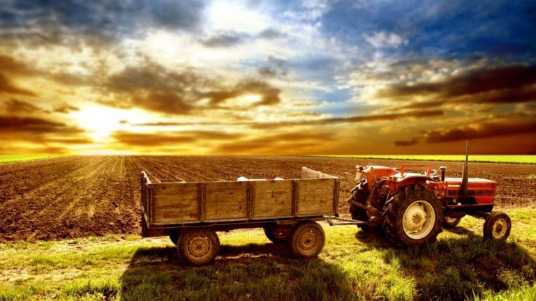România are 3,42 milioane de exploataţii agricole, cu o medie de 3,65 hectare per exploataţie