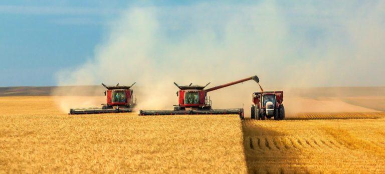 Străinii au adus 90 de milioane de euro în agricultură anul trecut